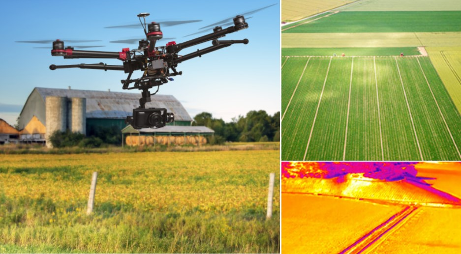 Precision Agriculture Image